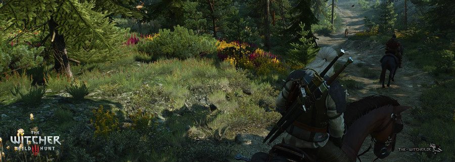 http://www.the-witcher.de/media/content/News_TW3-Wege-auf-Skellige_900x322.jpg