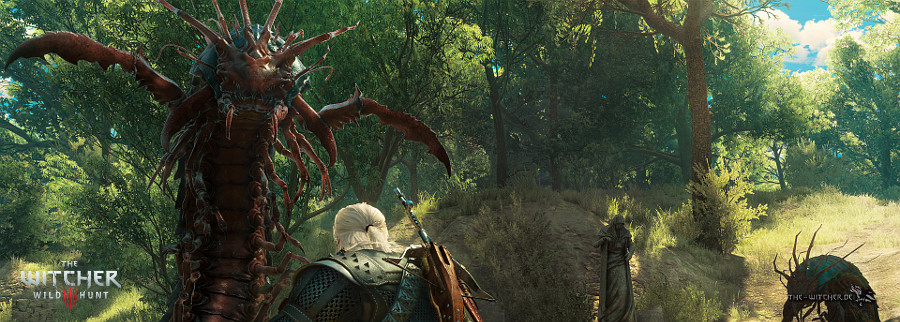 http://www.the-witcher.de/media/content/News_TW3BAW-Skolopendromorph_900x322.jpg
