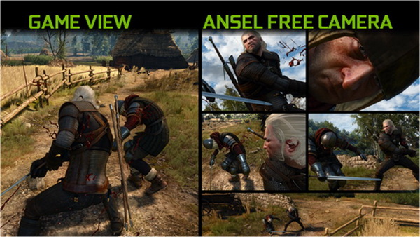 http://www.the-witcher.de/media/content/ansel_free_camera.jpg