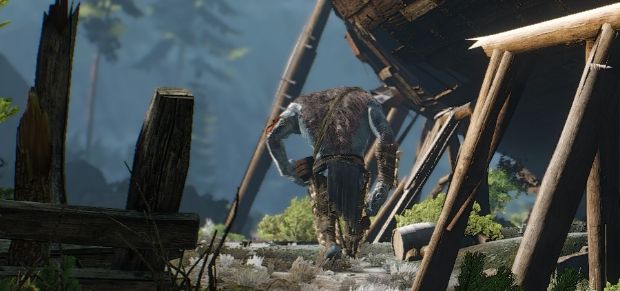 http://www.the-witcher.de/media/content/tw3_review_news_4.jpg