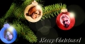 Merry Christmas von Dandelion