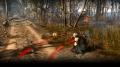 The Witcher 3 - Spuren