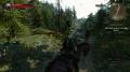 The Witcher 3 - Viel los auf den Wegen von Skellige